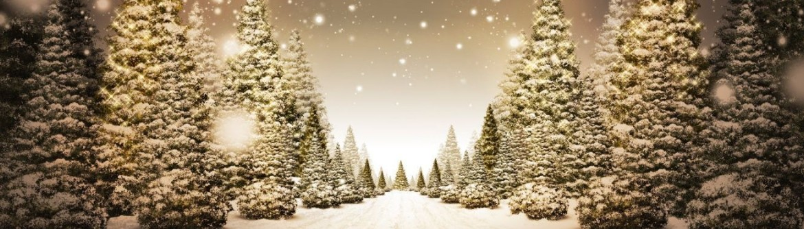 Christmas Advertising Tips Given By Students